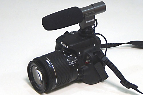s-polamic001.jpg