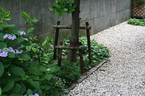 s-torii010.jpg